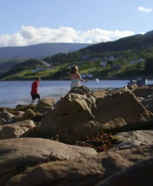 Woody Point inspiration