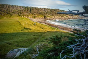 Broom Point, Gros Morne National Park, Western